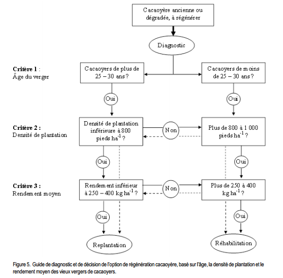 Identification de caractéristiques agronomiques pour le diagnostic et la prise de décision de régénération des vergers de cacaoyers en Côte D'ivoire